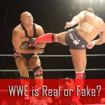 wwe is fake