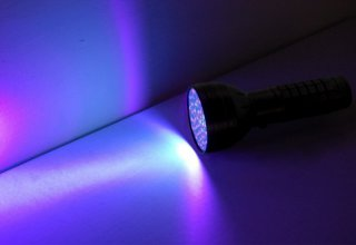 Best Black Light Flashlights