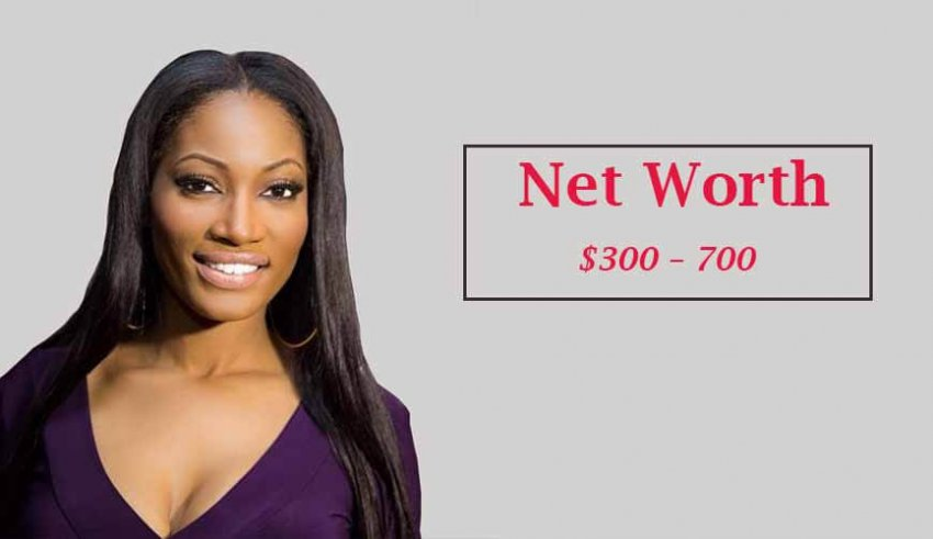 Erica Dixon's Net worth